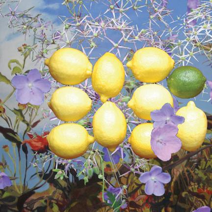 """nine lemons, 10""""X10"""""""