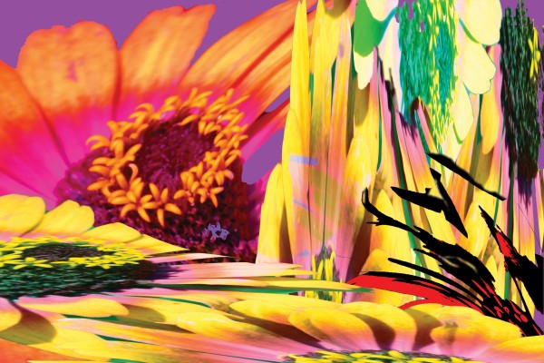 """digital collage, 24X36"""" limited edition giclee print, 1/7"""