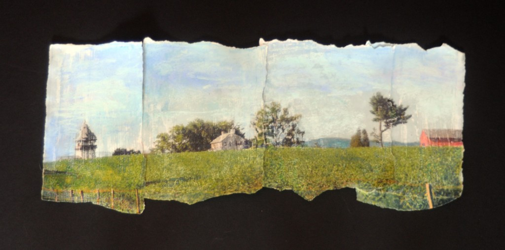 """High Lawn"" mixed media image transfer                         18""X10"""