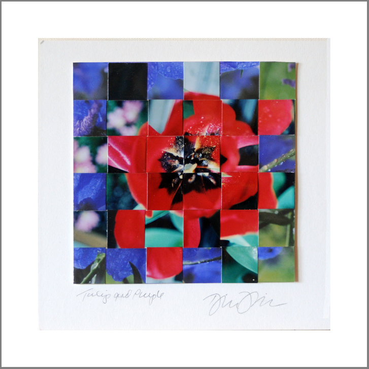 "Tulip and Purple, Woven Photos    6""X6"" (finished double mat size 10""X10"")"