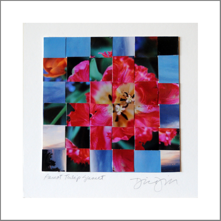 "Parrot Tulip Sunset, Woven Photos    6""X6"" (finished double mat size 10""X10"")"
