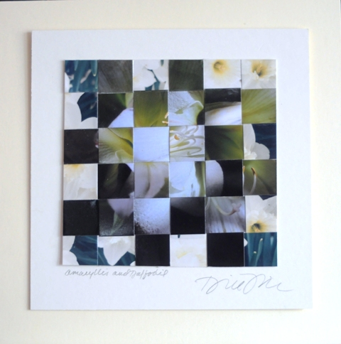 """Amaryllis and Daffodil"" woven photos"
