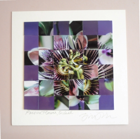 """ Passion Flower Orchid 6""x6"" repurposed woven photos, double matted to 10""X10"""